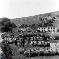 Sheep Sale, Kilnsey